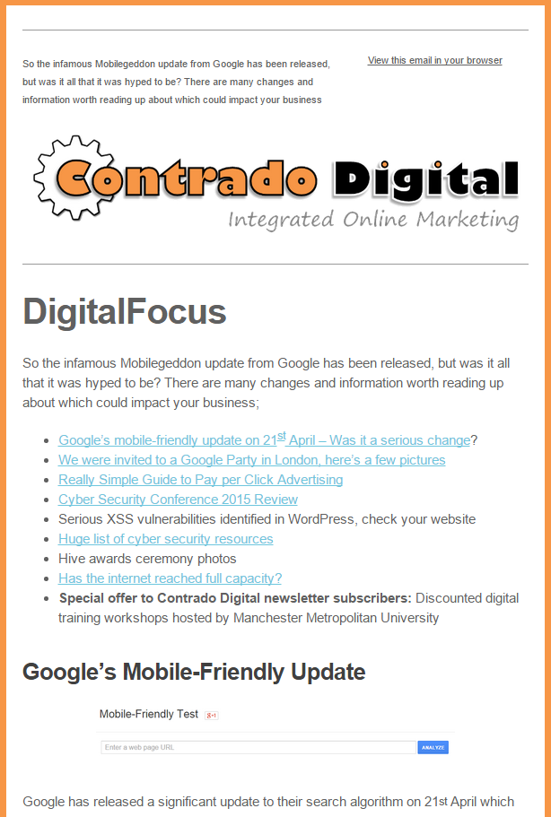 Example Email Marketing Campaign Newsletter
